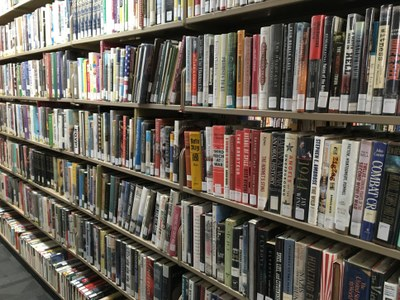 Rows of non-fiction books on shelves