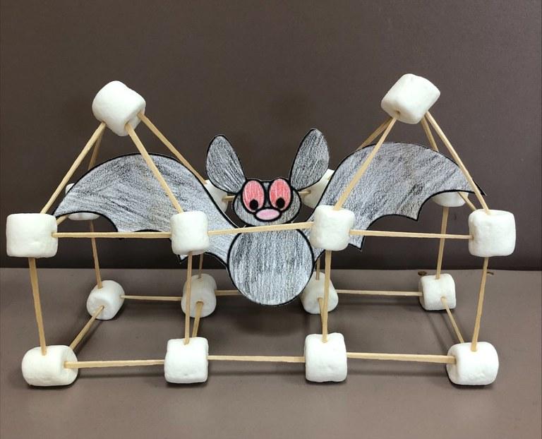 Trap the Bat STEM Challenge